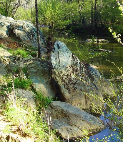 Rock Garden on the Eno River