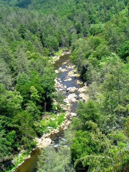 Linville River below falls